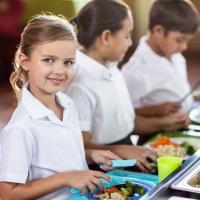 Школьников младших классов хотят обеспечить бесплатным горячим питанием