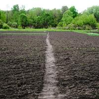 Предлагается изымать у граждан земельные участки для размещения на них отходов