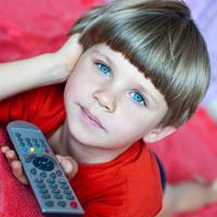 Правила оборота программ теле- и радиопередач, перечней и каталогов информационной продукции могут уточнить