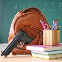 В России утвержден ГОСТ на охрану образовательных организаций